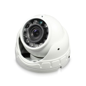 Swann Outdoor Security Camera: 1080p Full HD Mini Dome with IR Night Vision - PRO-1080FLD