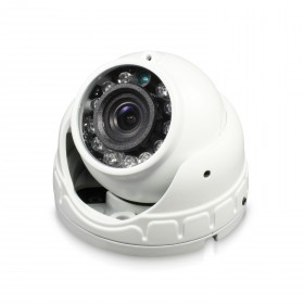 Swann Outdoor Security Camera: 1080p Full HD Mini Dome with Audio & IR Night Vision - PRO-1080FLD
